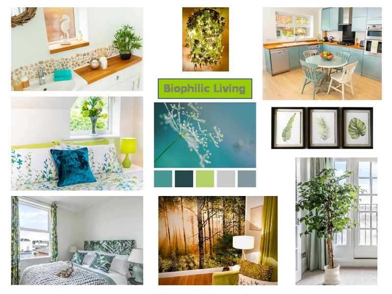Biophilic Design concept board aiming for wellbeing in Design